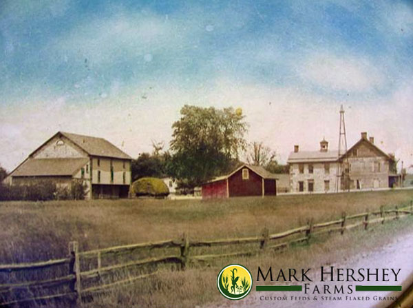 mark-hershey-farms-original-farm