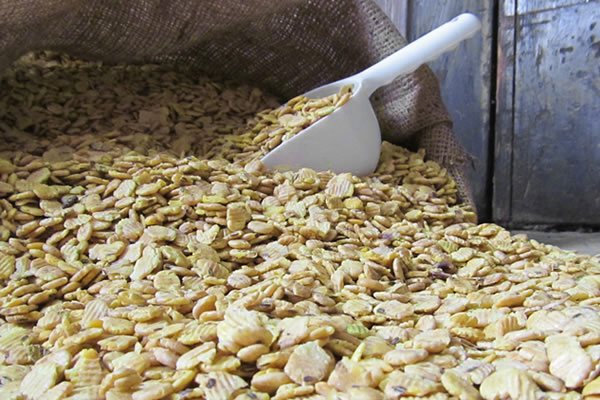Bulk or Bagged Soybeans | Roasted and Ground Soyflakes