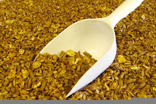 Cow, Calf & Steer Feeds | Pellet and Flake Feeds | Milk Replacers